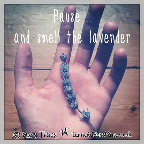 lavender copy