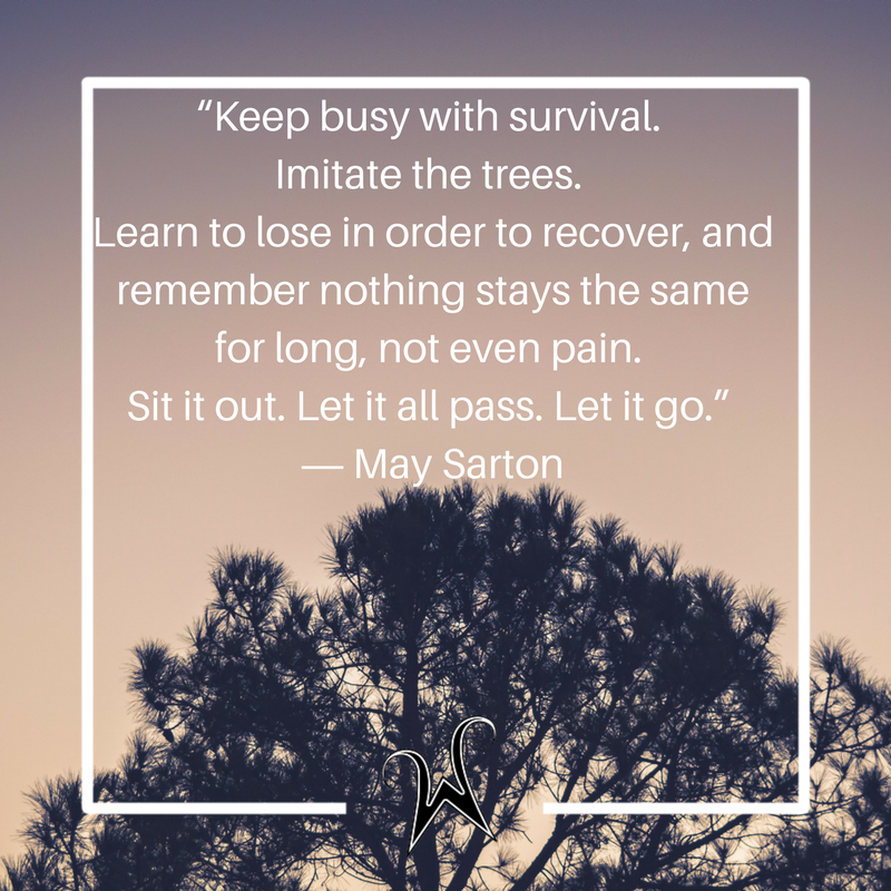 """Keep busy with survival. Imitate the trees. Learn to lose in order to recover, and remember nothing stays the same for long, not even pain. Sit it out. Let it all pass. Let it go."" ― May Sarton"