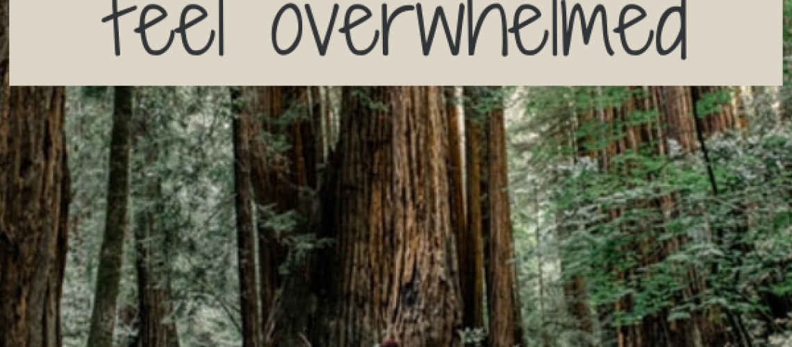 Overwhelm link