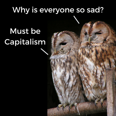 Sad Owls True